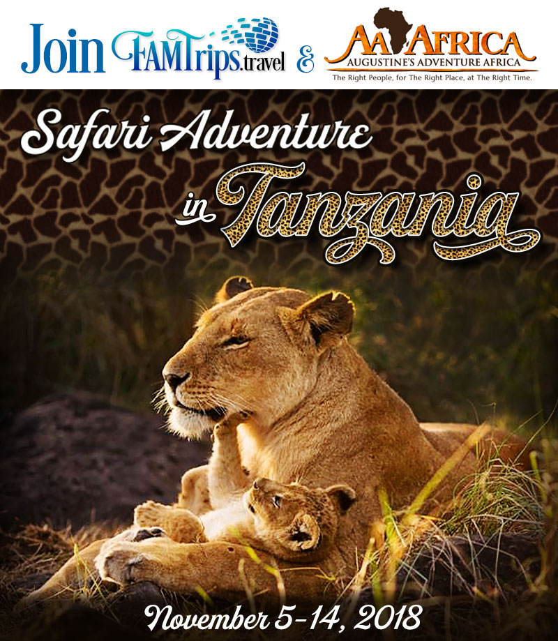 Safari Adventure in Tanzania 2018!